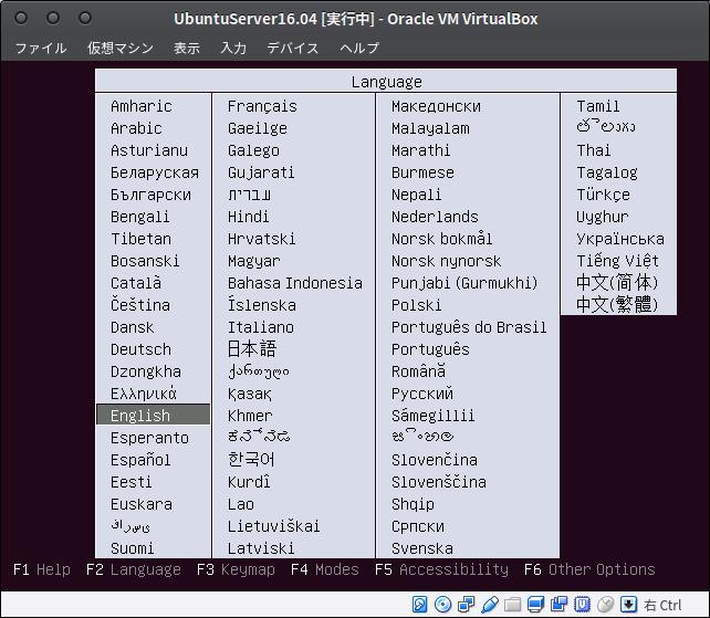 Fig11.UbuntuServer(言語の選択1)