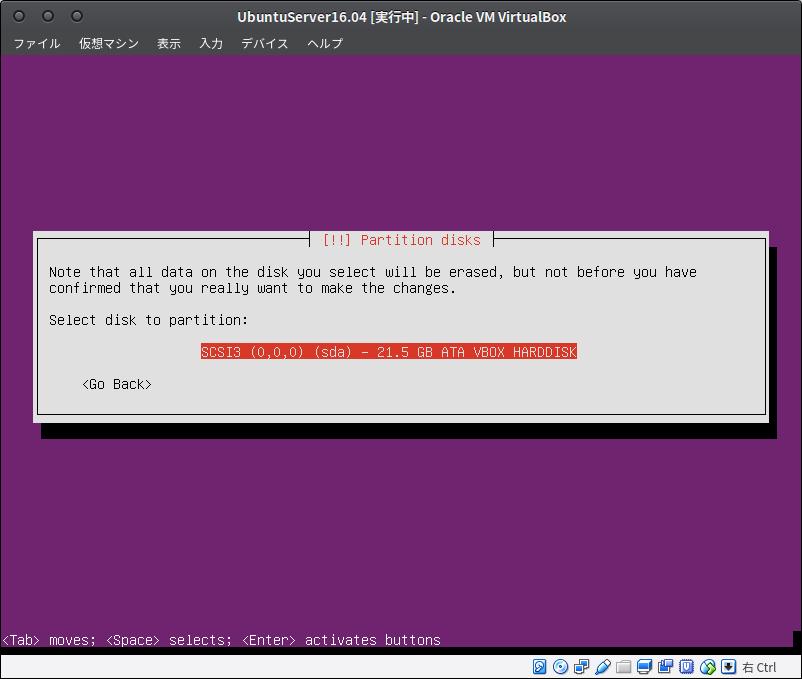 Fig29.UbuntuServer(ディスクパーティションの設定2)
