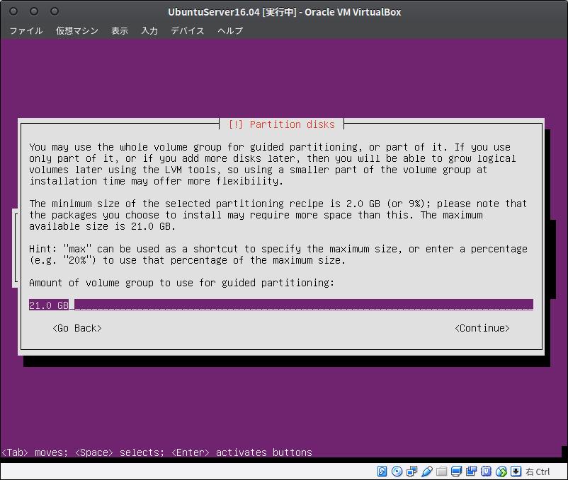 Fig31.UbuntuServer(ディスクパーティションの設定4)