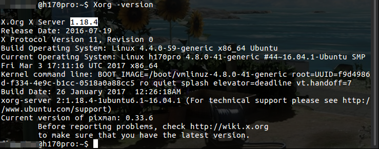Fig8.Xserverのバージョンを確認