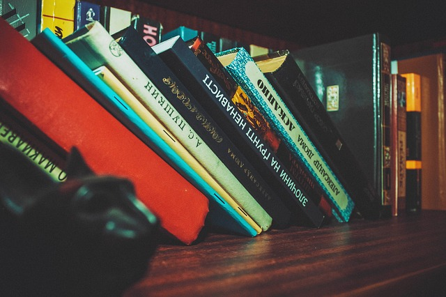 挿絵:倒れた本の写真